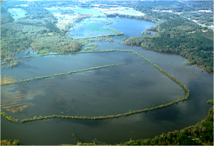 Alligator Lake Aerial