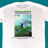 IA T-shirt, back view