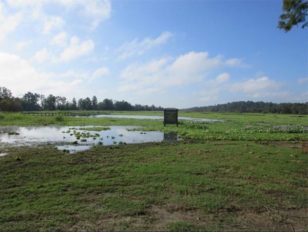 Alligator Lake, photo by Bob Ulanowicz
